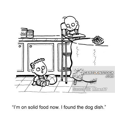 'I'm on solid food now. I found the dog dish.'