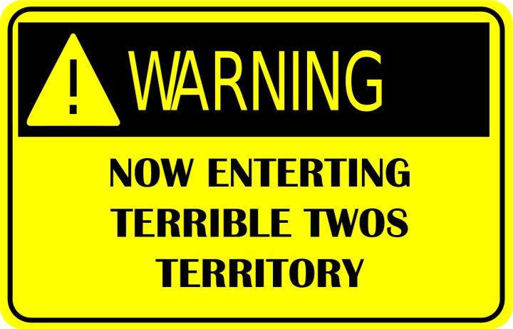warning_sign TERRIBLE copy